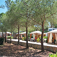 Le Calanchiole Camping Village - Capoliveri - Isola d'Elba